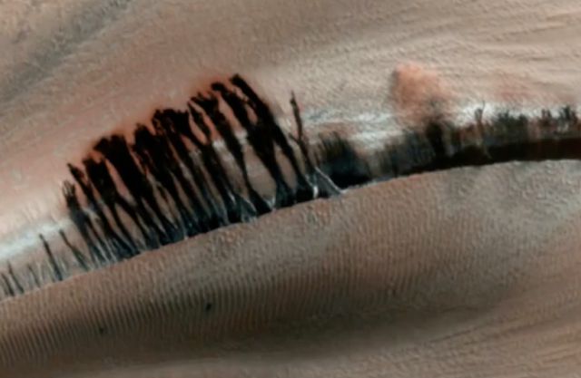 Озера, Леса И Голубое Небо Видны На Марсе 2