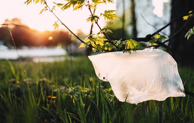5 Jenis Sampah Plastik yang Sulit Terurai Alami