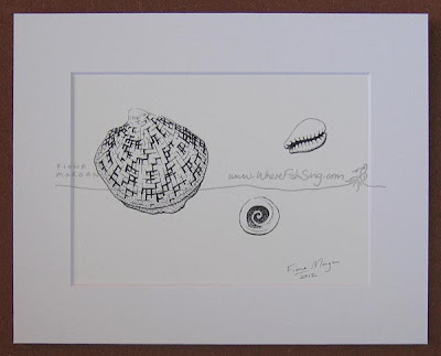Beachcombing shells - minimalist drawing by Australian artist Fiona Morgan