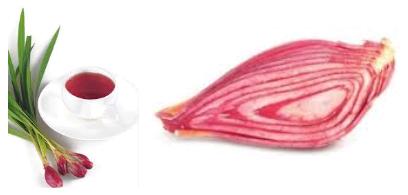 Cara Mengkonsumsi Bawang Dayak, Bawang Sabrang ,Bawang Berlian