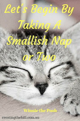 Let's Begin By Taking A Smallish Nap or Two ~ Winnie the Pooh.