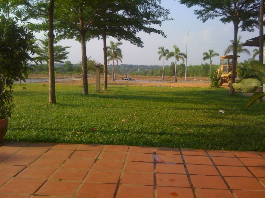 công viên cay xanh