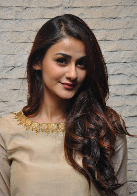 Aditi Arya Latest photos 2016