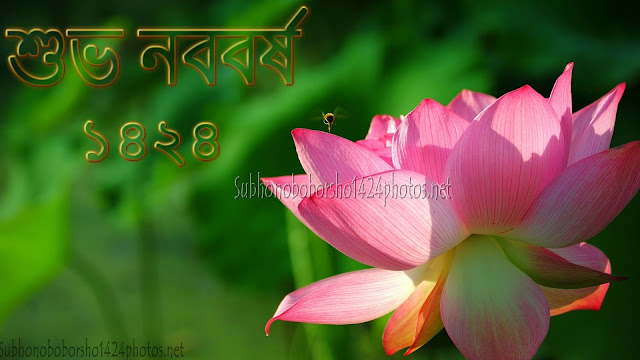 Pohela Boishakh 1424 Pictures Download