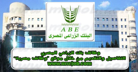 """نموذج التقديم لوظائف """"البنك الزراعي المصري"""" لجميع المؤهلات والمحافظات"""