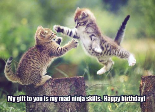 Happy Birthday Funny Images HD Wallpers Free Download