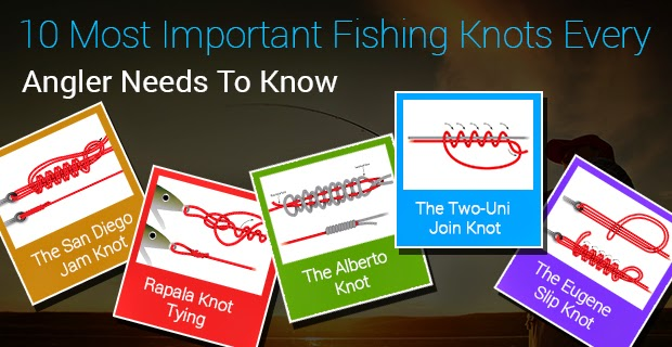 Find Fishing Spots Near your Location: 10 Most Important