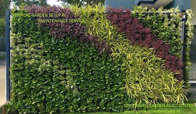 vertical garden consultant