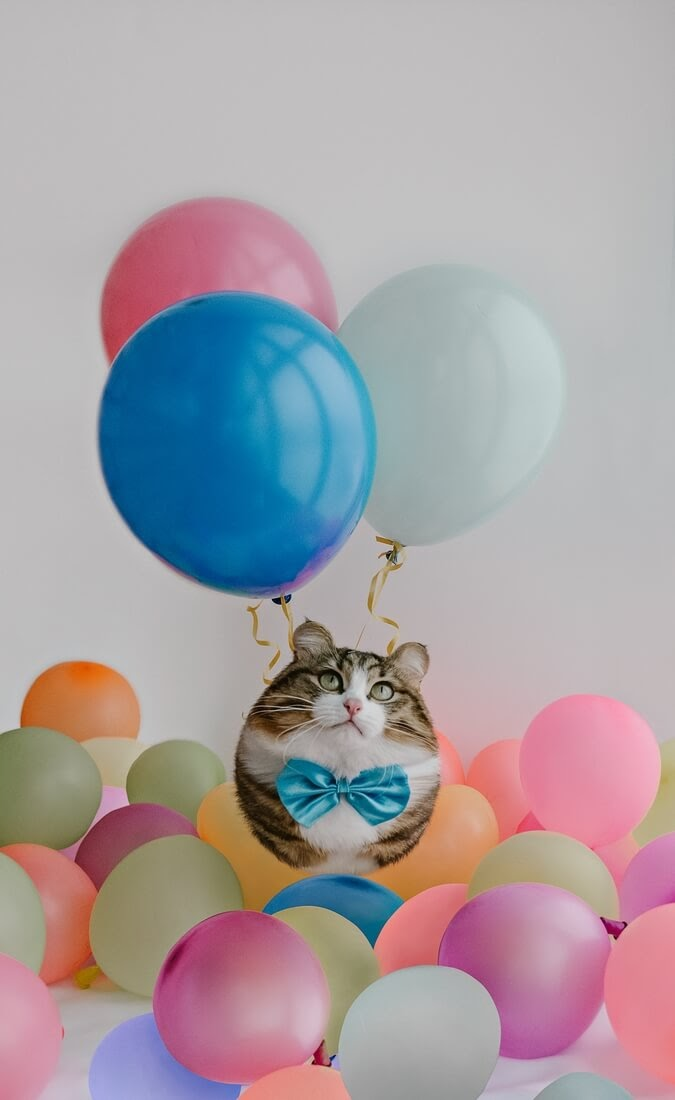 09-Cat-Aditya-Aryanto-Surreal-Animals-Ball-Photo-Manipulations-www-designstack-co