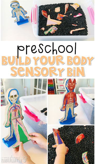 We LOVE this build your body sensory bin. Great for learning about the human body in tot school, preschool, or even kindergarten!