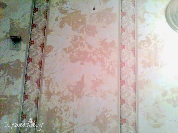 My guest bath redo before wallpaper