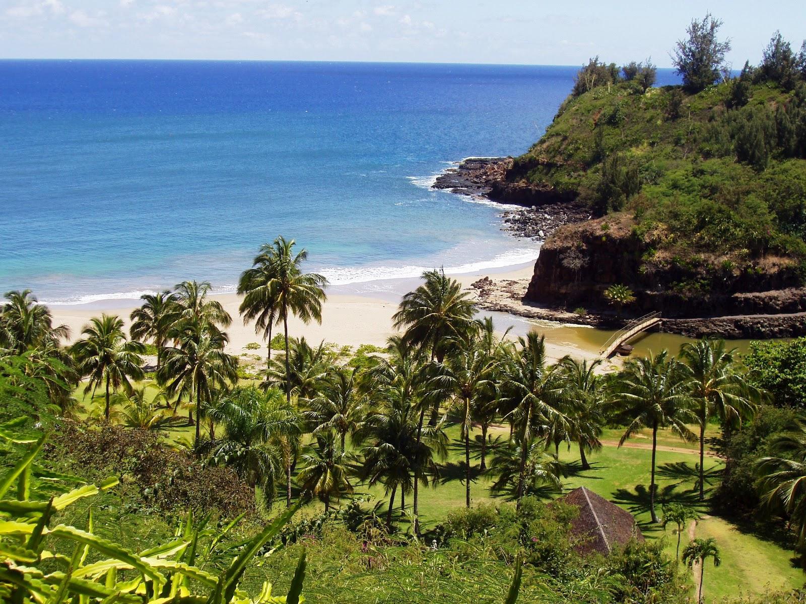 Ho okuleana national tropical botanical garden ntbg - National tropical botanical garden ...