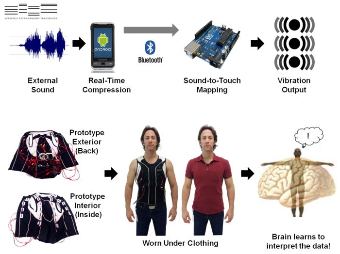 image showing description of how VEST works.