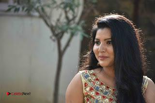 Actress Nayana Nair Stills in Long Dress at Arasakulam Tamil Movie Audio Launch  0012.jpg