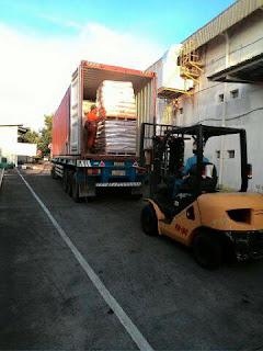 Jasa Sewa Trucking Trailer Container Cargo 20 40 Feet