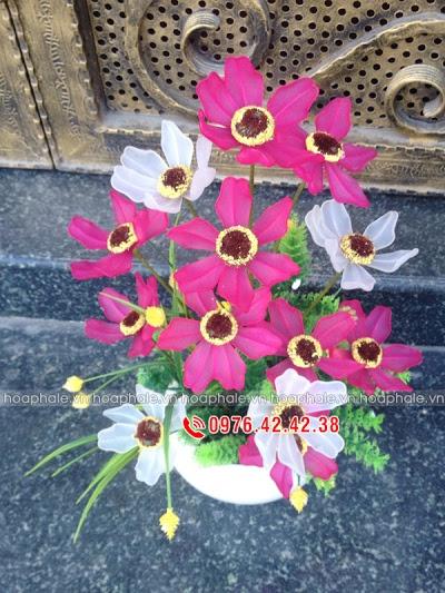 Hoa da pha le o Me Linh