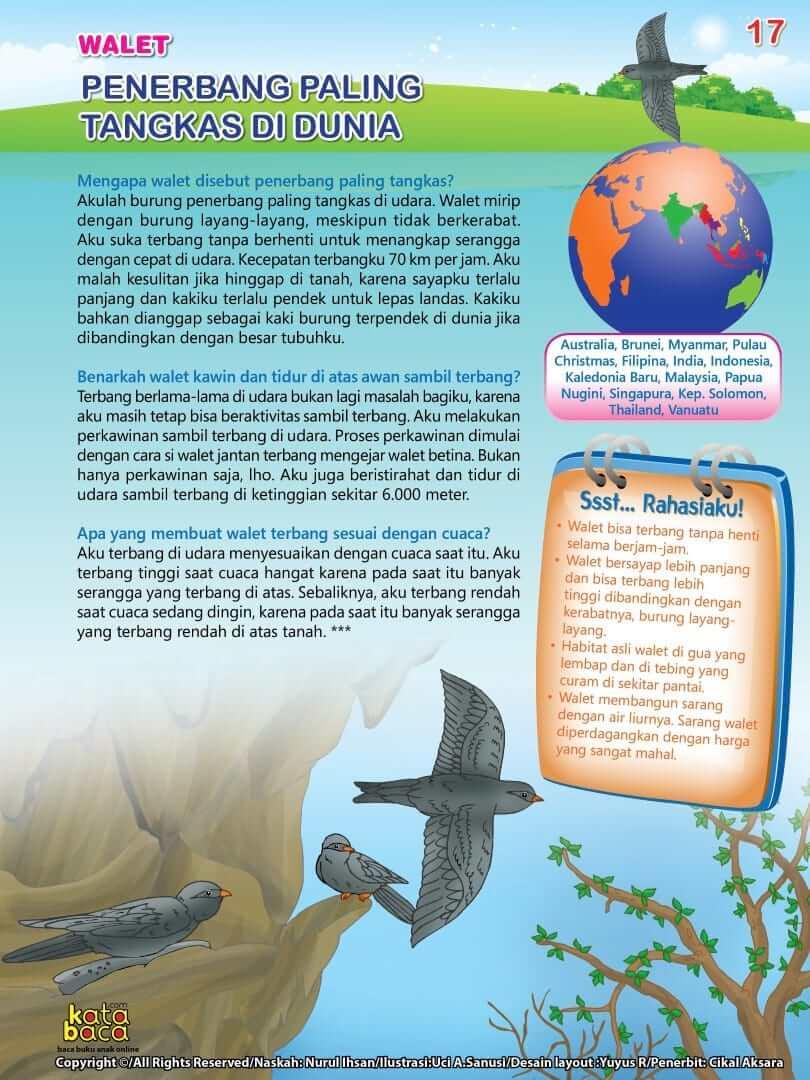 Burung Walet adalah Penerbang Paling Tangkas di Dunia