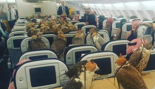 Pangeran Saudi Borong 80 Tiket Pesawat Untuk Ini! Netizen: