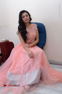 Actress Neha Hinge Stills in Pink Long Dress at Srivalli Teaser Launch  0134.JPG