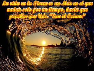 """La vida en la Tierra es un Mar en el que nadan solo por un tiempo, hasta que perciben que Uds. """"Son el Océano""""."""