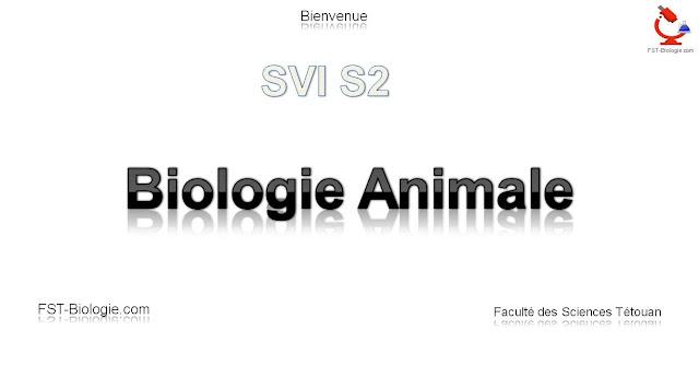 cours de biologie animale SVTU svt s2