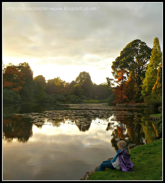 Autumn reflections and Fall colour, National Trust Sheffield Park Garden