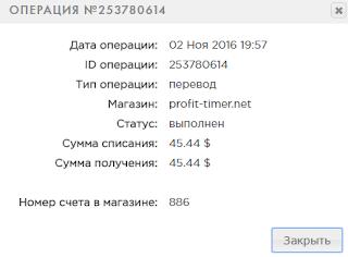 profit-timer.net обзор