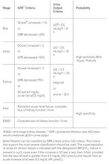 Sistem klasifikasi RIFLE pada gagal ginjal akut dan kronis