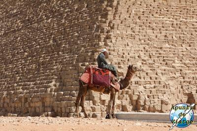 Uno de los muchos camelleros que permiten montar al camello
