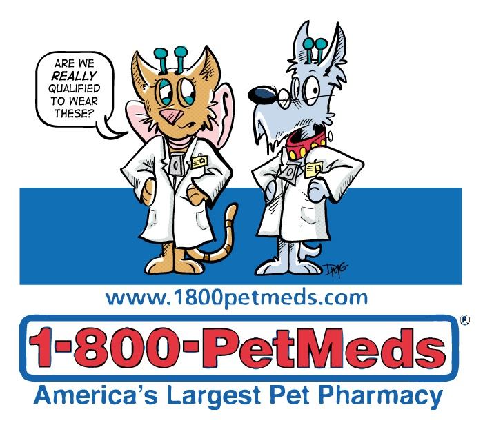 Petmeds coupon codes