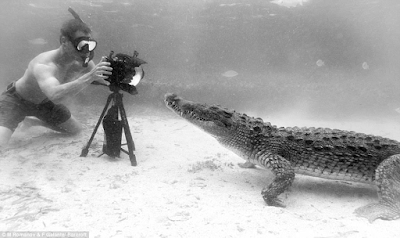 Daring filmmakers get close and personal with crocodiles in a habitat in Mexico