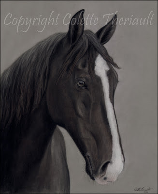 Tennessee walking horse portrait in pastel by animal artist Colette Theriault