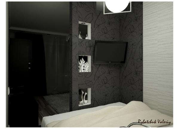 дизайн комнаты с нишей в однокомнатной квартире фото