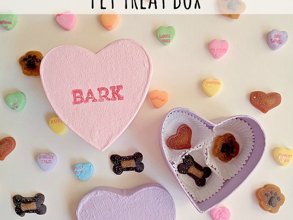 3 Step DIY: Conversation Heart Pet Treat Box