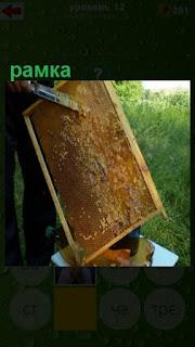 очищение рамки от улья и сбор меда на улице