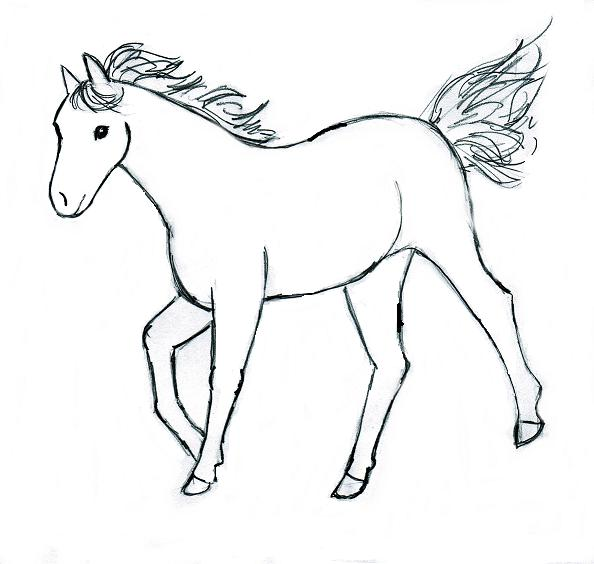 Horses drawings in pencil step by step - photo#45
