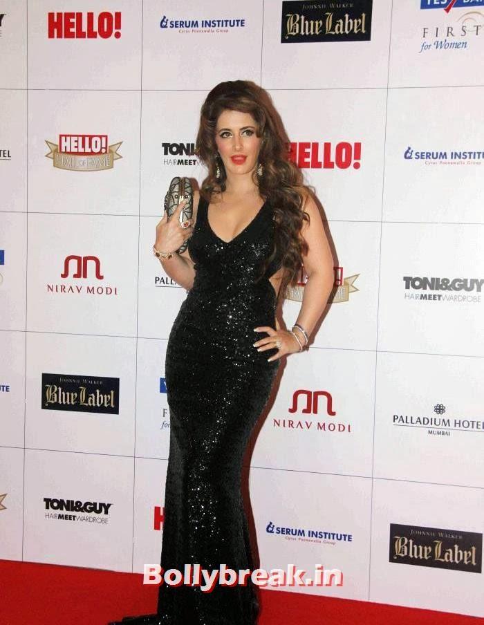 Pria Kataaria Puri, Hello Awards 2013 Pics