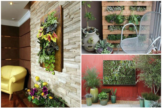 Design Of A Vertical Garden — 10 Strange And Wonderful Ideas