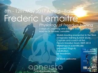Apnea Freediving Course and Yoga, Experience of Your Life