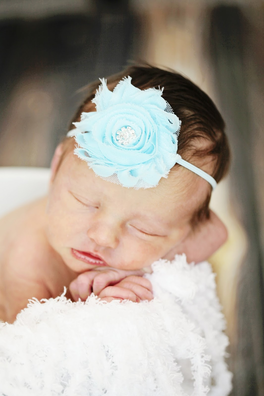 newborn girl photos eau claire