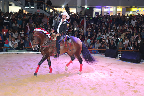 Gabriel-Arriaga-show-caballos-Centro-Comercial-Plaza-de-las-Américas