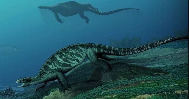 Η γιγαντιαία προϊστορική χελώνα δεν είχε καθόλου κέλυφος!