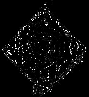 drop cap digital illustration