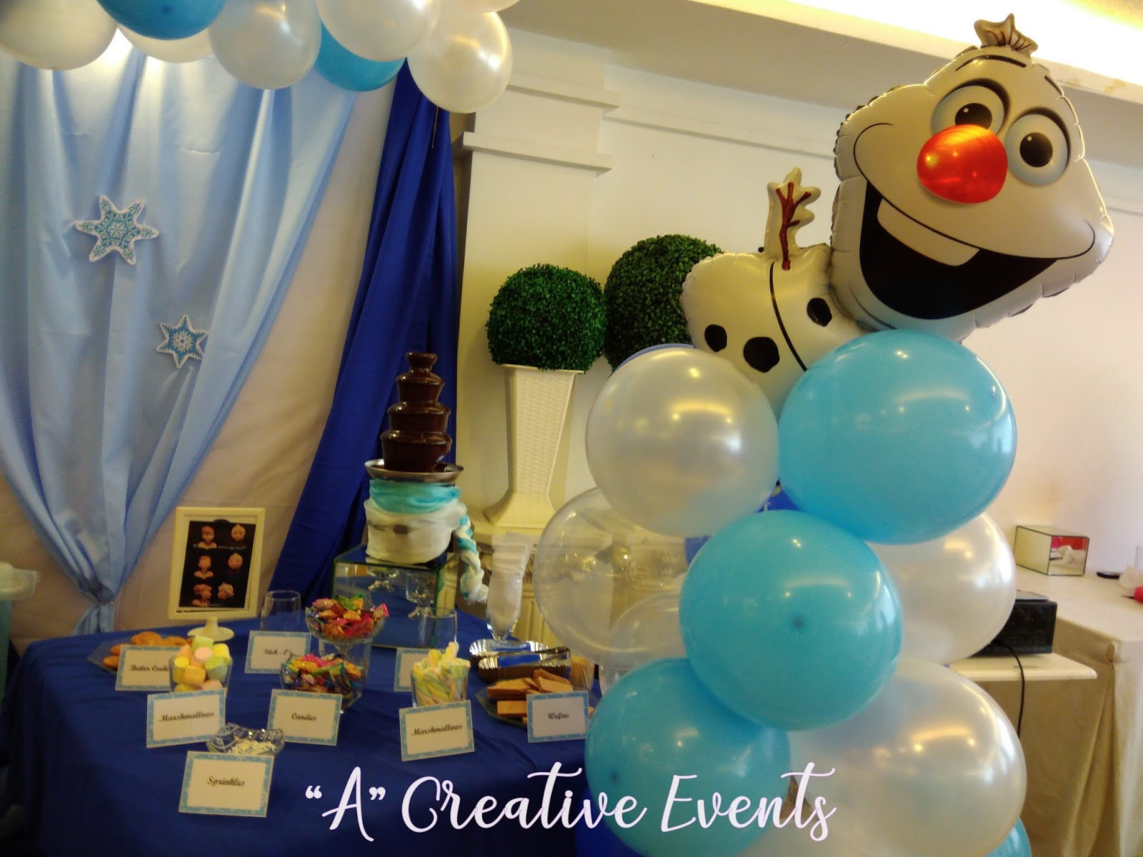 Chocolate Fountain Frozen Themed Party Sweet Station - Davao City