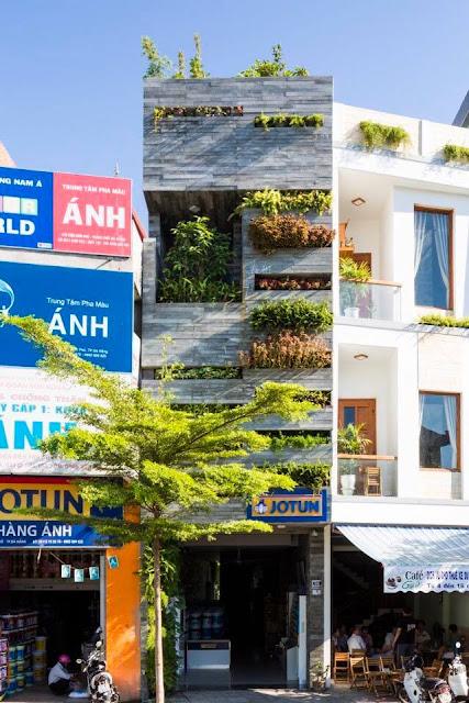 Cây xanh trong nhà phố