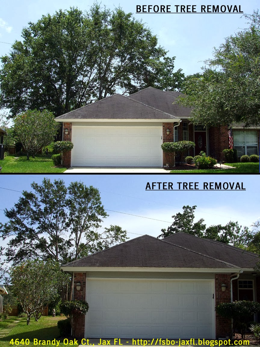 4640 Brandy Oak Court - Comparison of Before and After Tree Removal