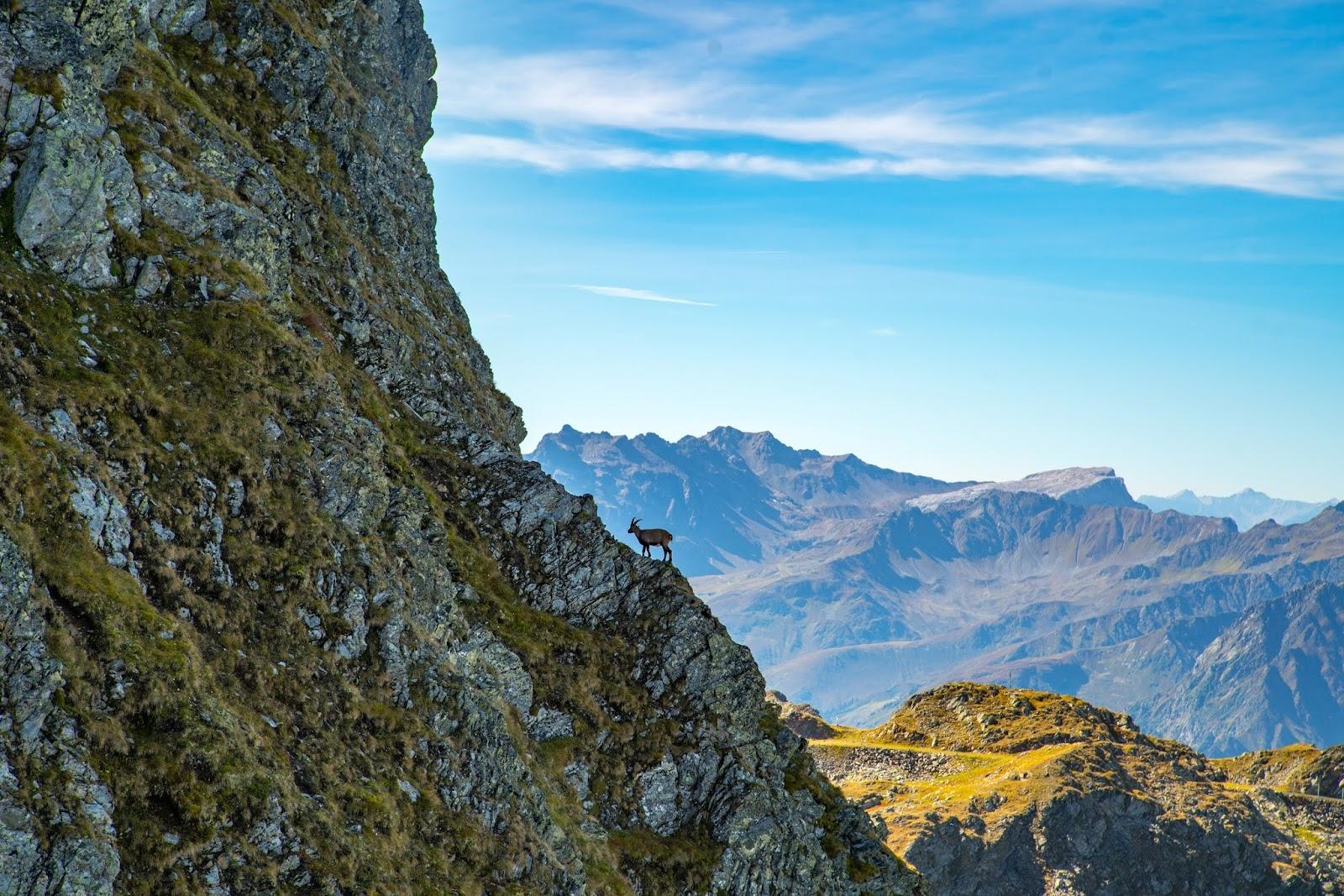 Klettersteig Hochjoch : Klettersteig beschreibung hochjoch