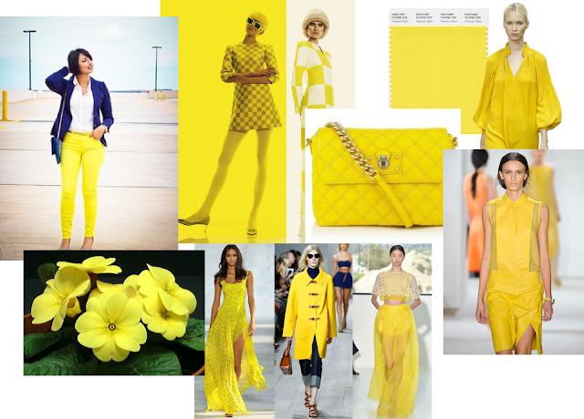 primrose yellow_primavera