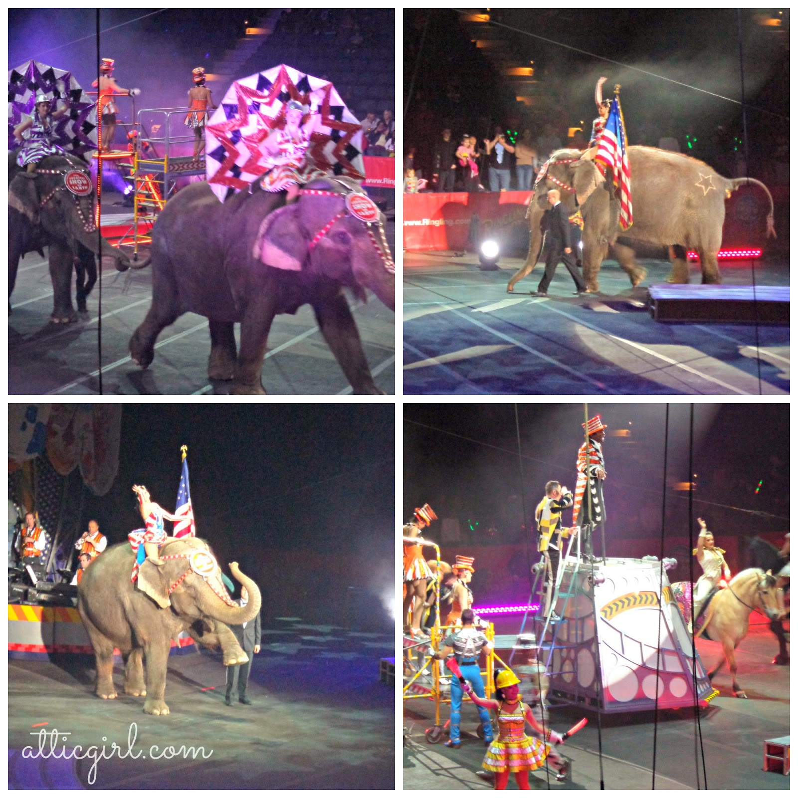 circus, Baltimore, Feld Entertainment