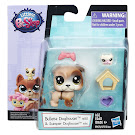 Littlest Pet Shop Pet Pairs Generation 5.5 Pets Pets